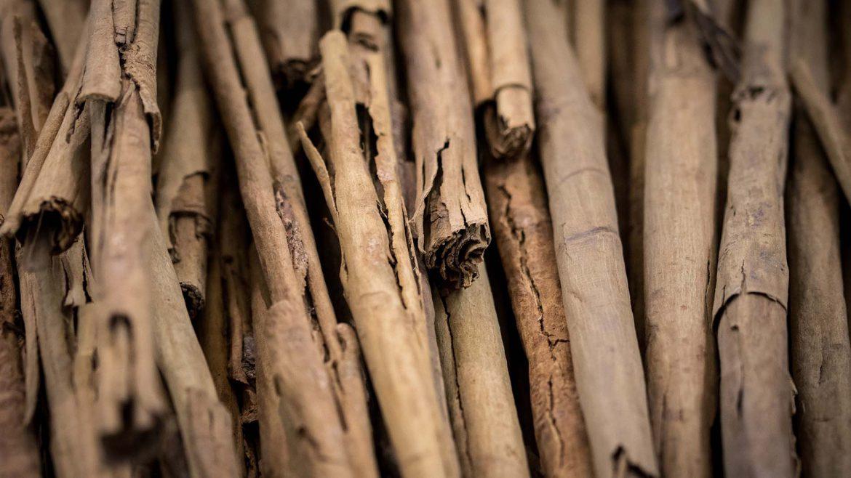 Comment utiliser la cannelle comme brûleur de graisse ?