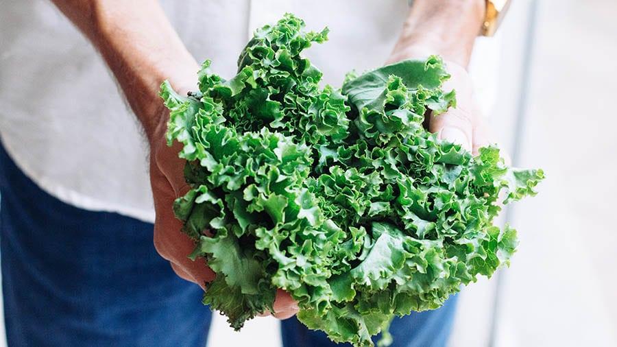 legume bruleurs graisse chou-frisé